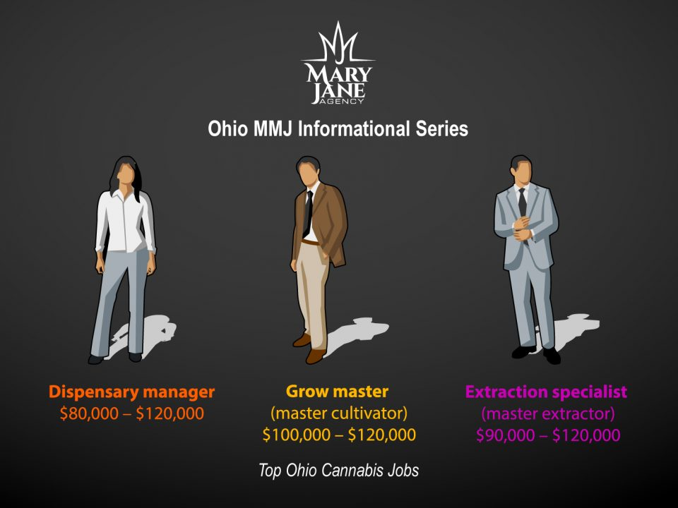 3 Jobs in the Ohio Cannabis Industry Command the Highest Salaries