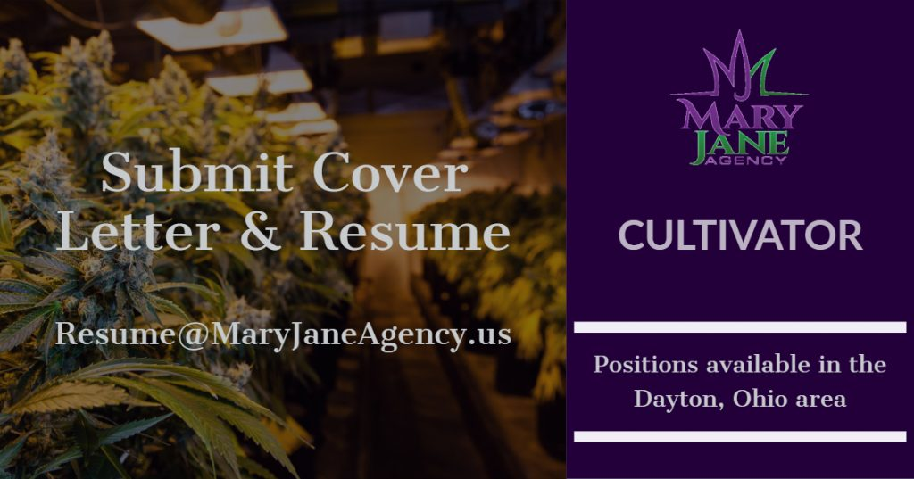 Write a Cannabis Resume - Cultivation jobs